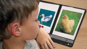 Imagier sonore et animaux