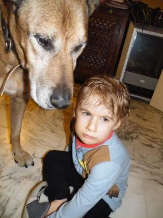 Relation enfant - animal