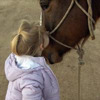 Cheval et enfant handicapé