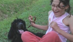 Animaux et handicap