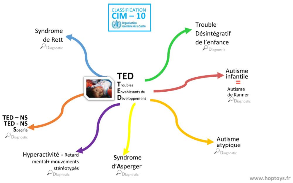 La-classification-des-TED-s