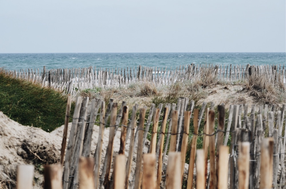 Une plage ensoleillée