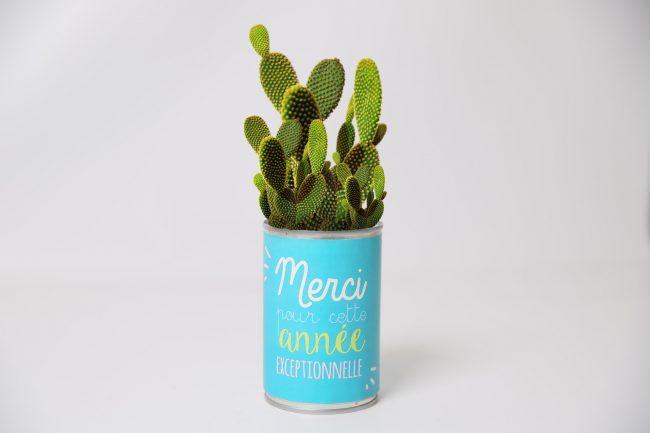 cadeau plante avec pot personnalisé