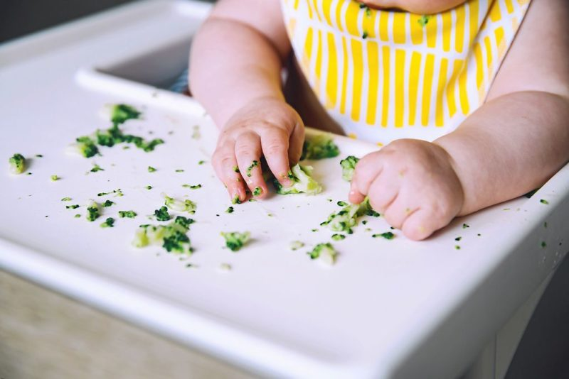 La DME, la diversification alimentaire menée par l'enfant