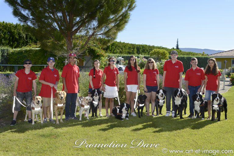 Promotion Dave Fondation Frédéric Gaillane
