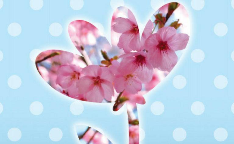 Une carte fleur