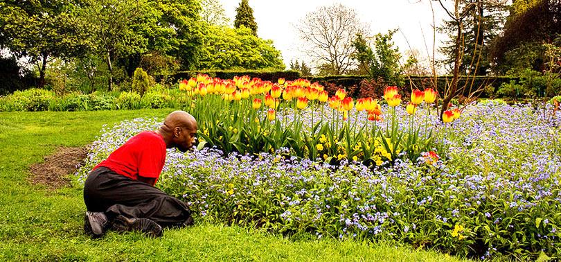 contemplacion de las flores en el jardin sensorial
