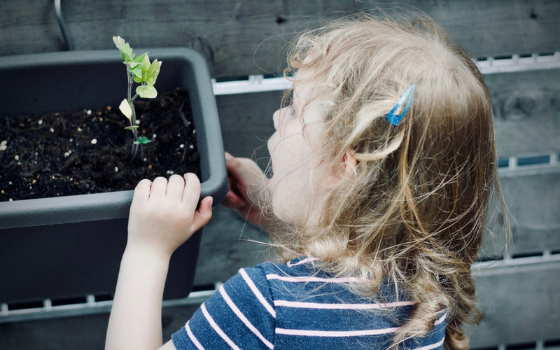 Une enfant apprend la science de la nature STIM