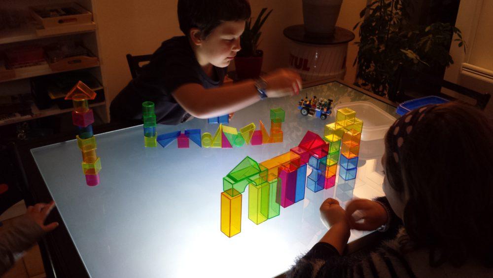 3a3da94dbb337 de s émerveiller ensemble (ramasser des feuilles en forêt pour faire des  ateliers sur sa table lumineuse