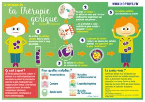infographie thérapie génique