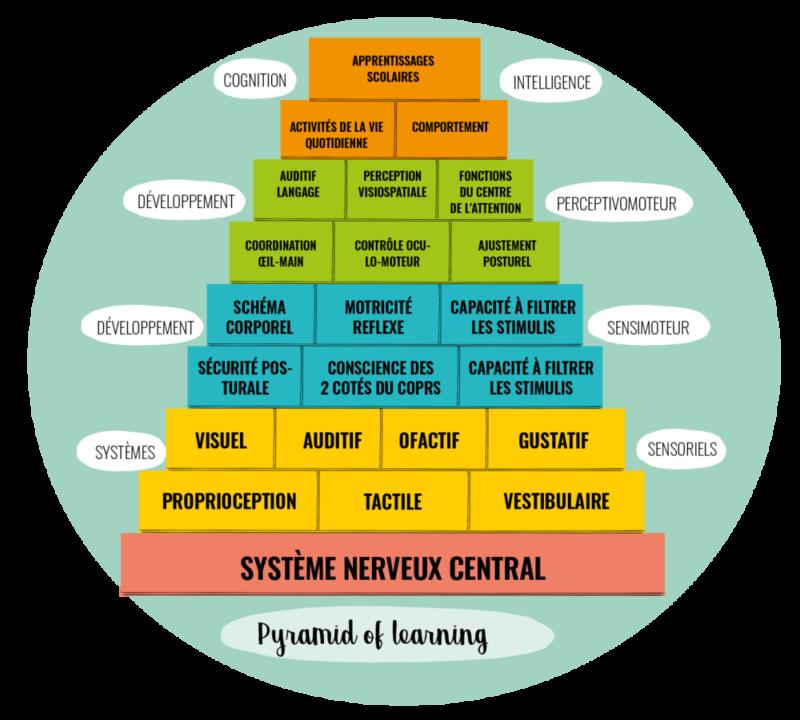 La pyramide d'apprentissage