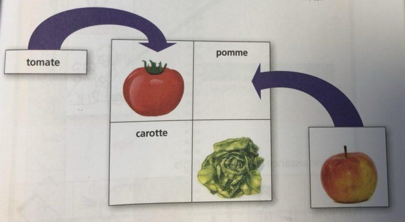Un schéma illustrant l'association signifiant / signifié dans la lecture