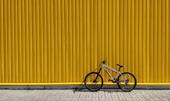 VanRaam : les vélos adaptés