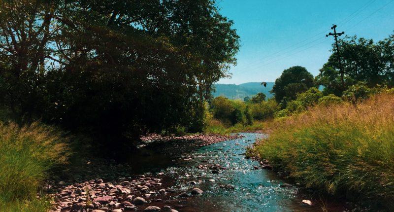Un cours d'eau en pleine nature