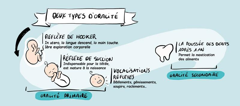 types d'oralité