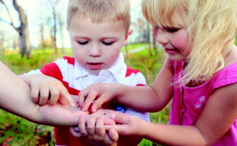 Deux enfants découvrent la nature.