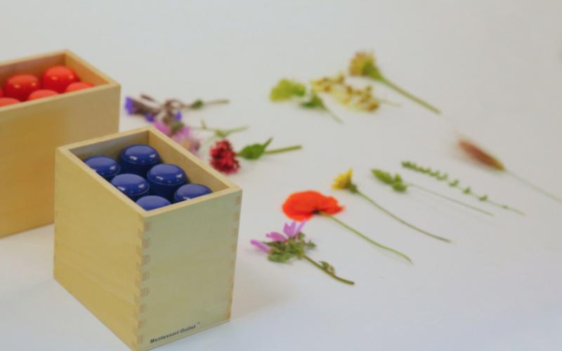 Une idée d'activité avec des fleurs