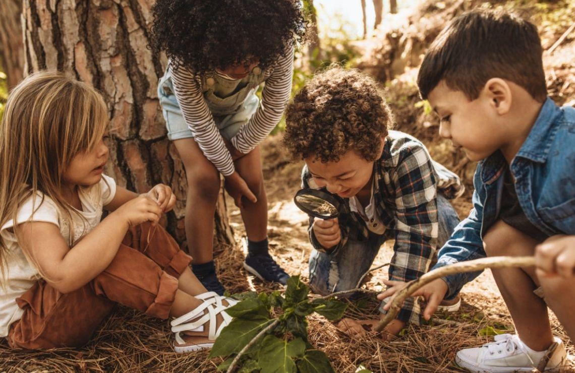école en pleine nature : observer, explorer et partager