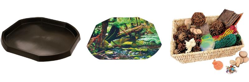 Bac d'exploration avec une thématique forêt