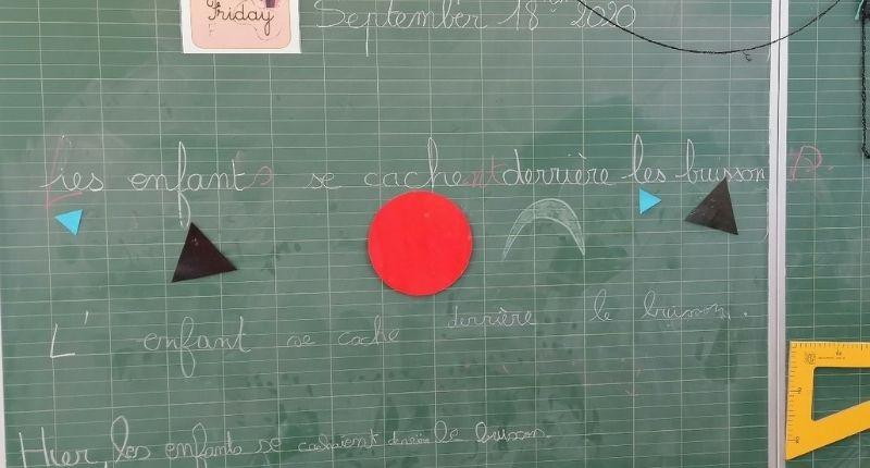 Analyse de phrases au tableau en utilisant les symboles de grammaire Montessori