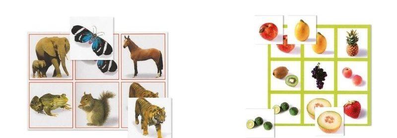 Loto des animaux et loto des fruits