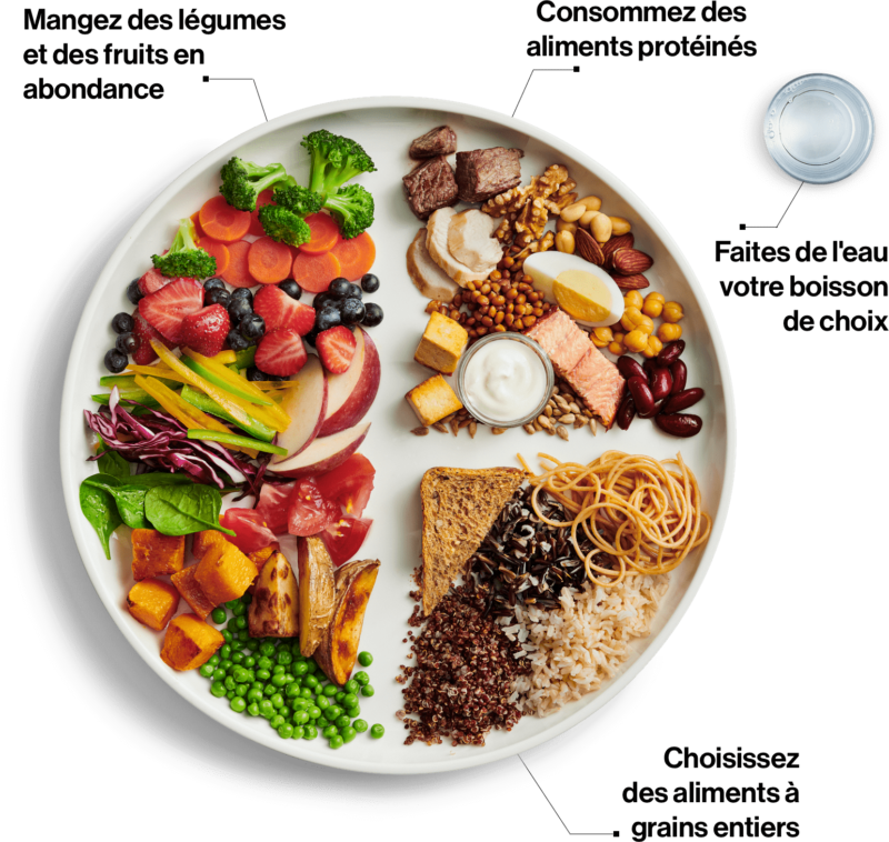Recommandations du guide alimentaire canadien