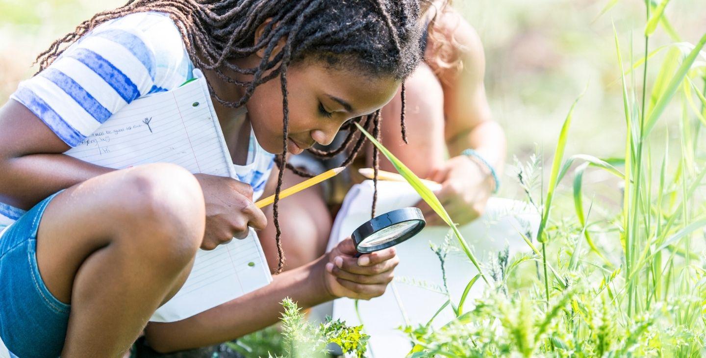 L'école en pleine nature : observer et explorer