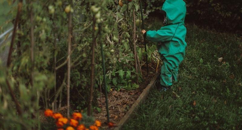 Crèche Wild Child : l'apprentissage par la nature