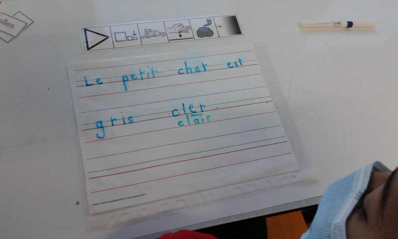 Faire des phrases à l'aide de pictogrammes. Exemple : Le petit chat est gris clair.