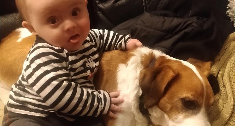 Une photo de Marley, bébé porteur de trisomie 21, et de son chien