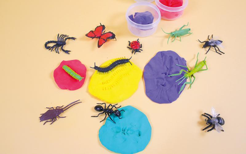 Une activité d'empreintes d'insectes pour le Jour de la Terre
