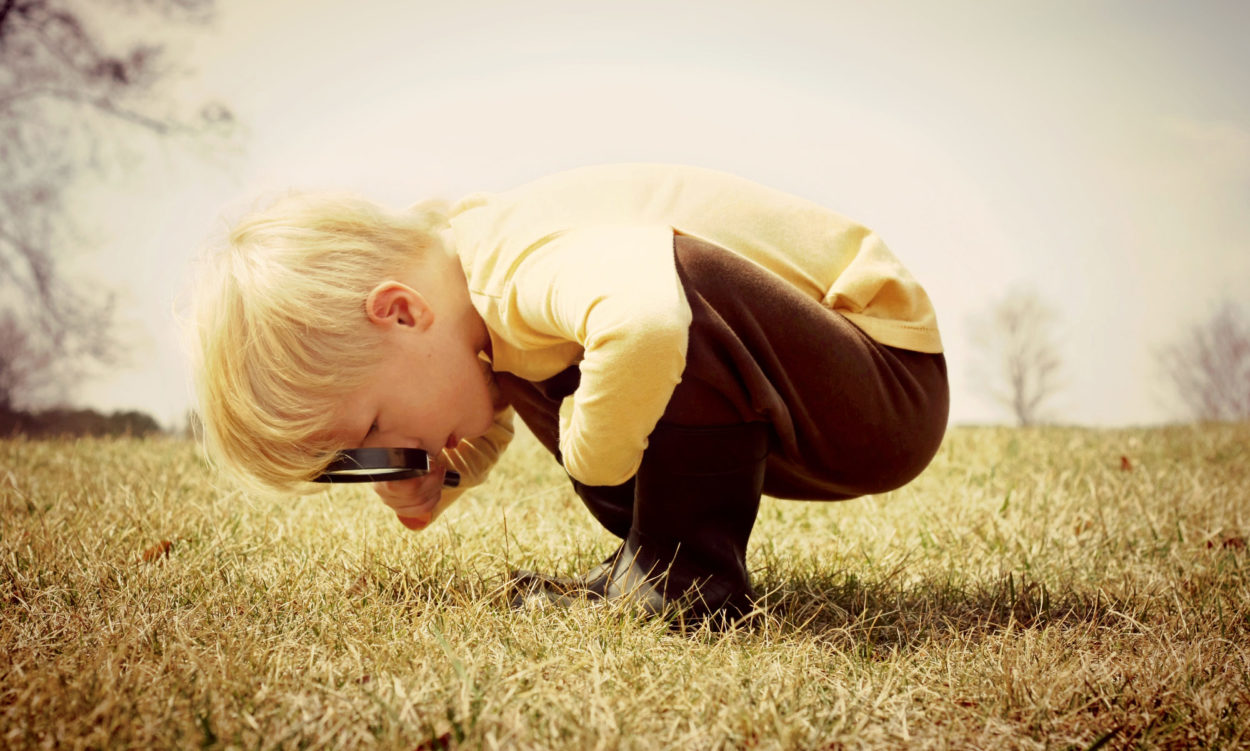 Formation-action : la slow pédagogie