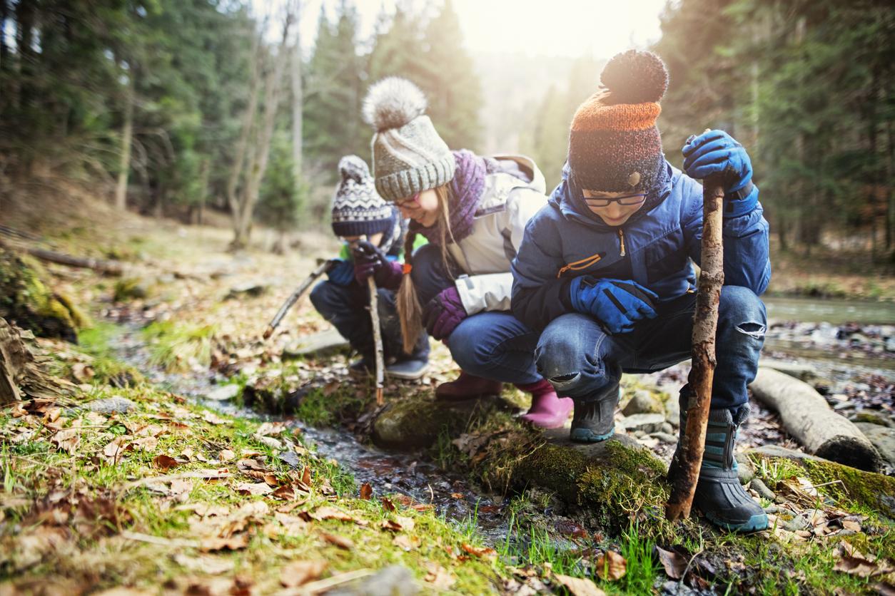 Faire école dehors : forest school