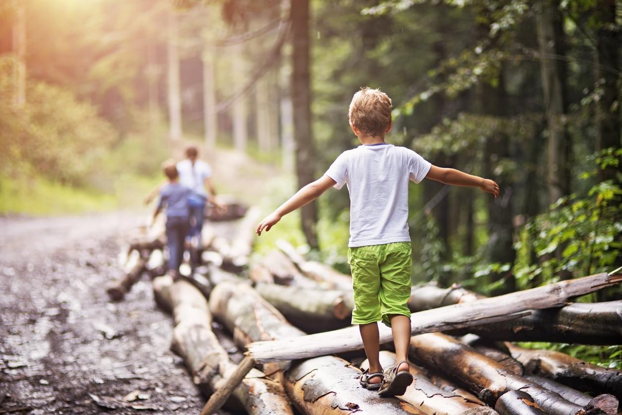 Faire classe dehors : l'école dans la forêt