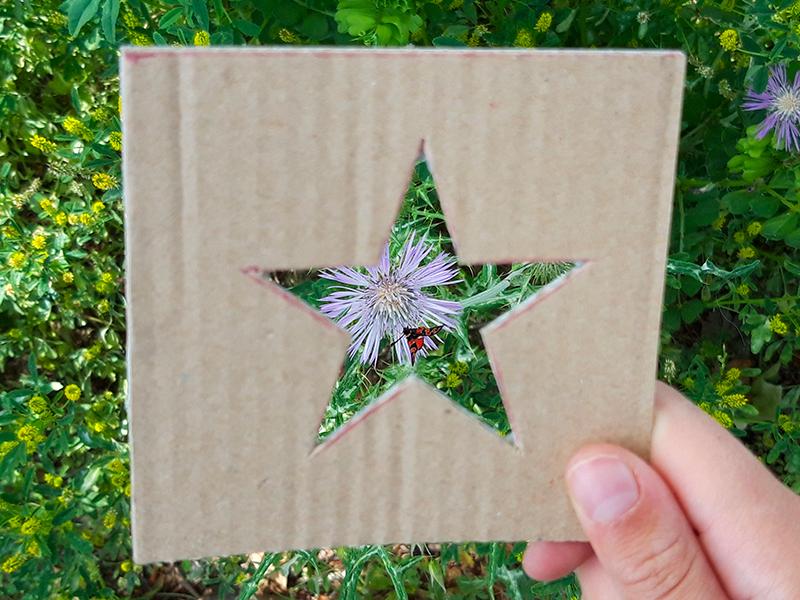 Plantillas de naturaleza estilo fotomatón