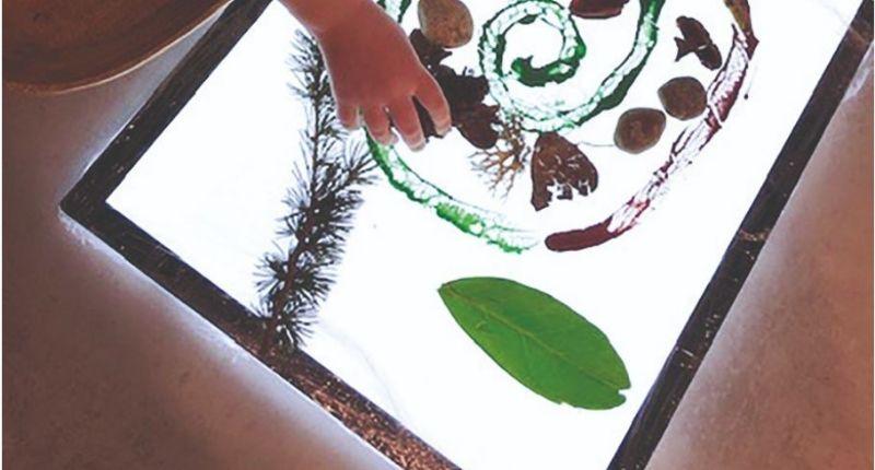 Création d'un tableau de la nature avec la table lumineuse