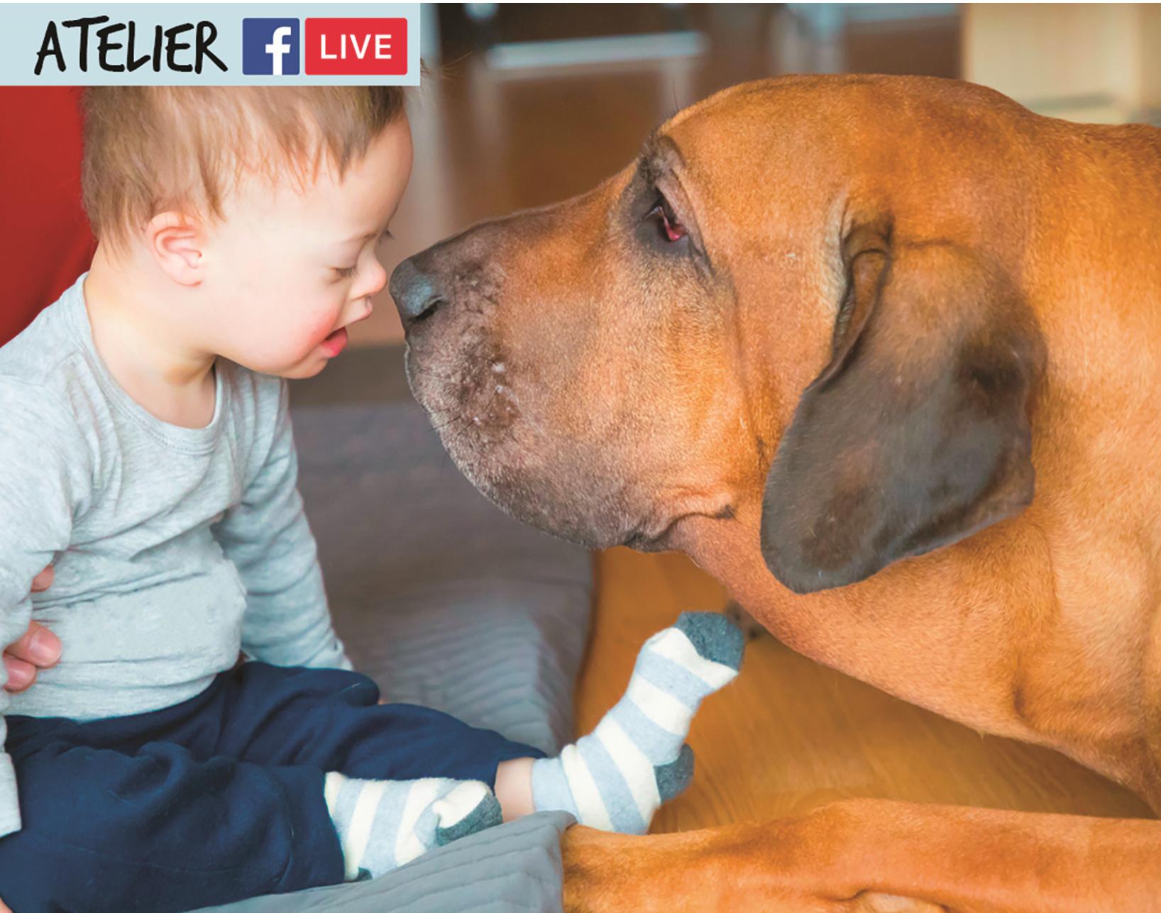 enfant et chien complices