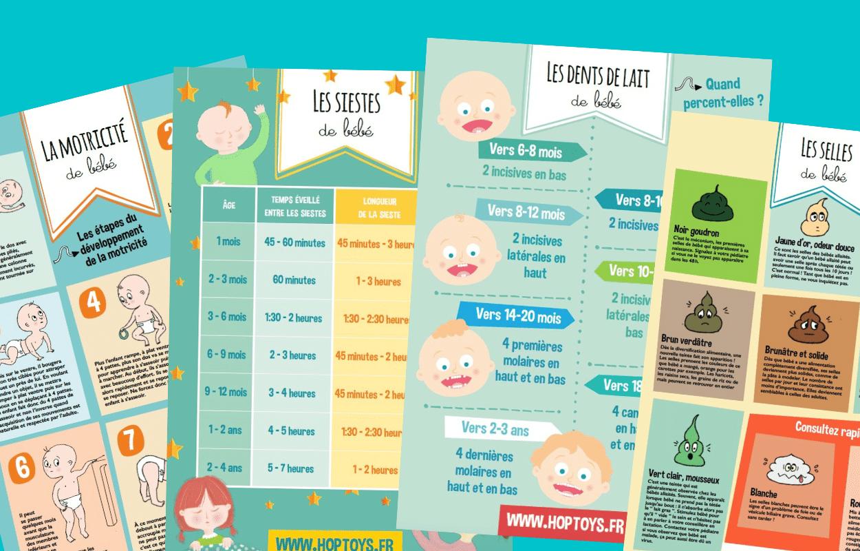 Infographie : les différentes étapes de bébé