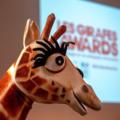 La cérémonie des Girafes Awards