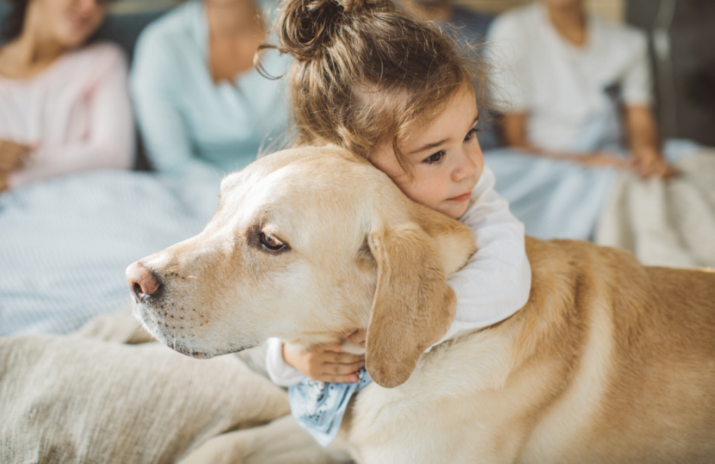 Un enfant enlace un chien